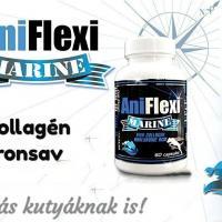 AniFlexi Marine, ízületvédő allergiás kutyáknak is